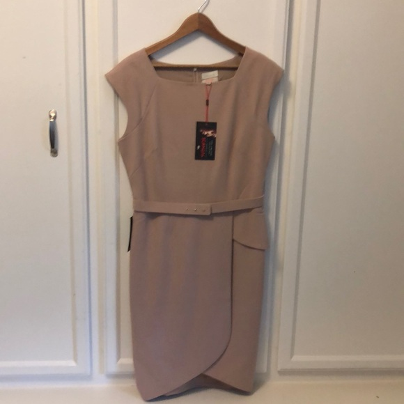 The Limited Dresses & Skirts - Blush short sleeve scallop bottom dress